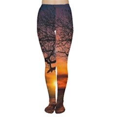 Lonely Tree Sunset Wallpaper Tights