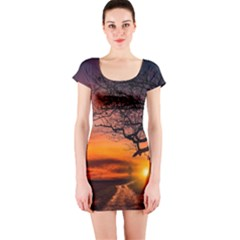 Lonely Tree Sunset Wallpaper Short Sleeve Bodycon Dress