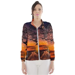 Lonely Tree Sunset Wallpaper Windbreaker (women)