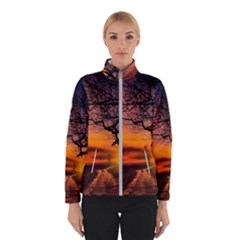 Lonely Tree Sunset Wallpaper Winter Jacket