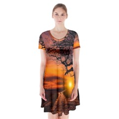 Lonely Tree Sunset Wallpaper Short Sleeve V Neck Flare Dress