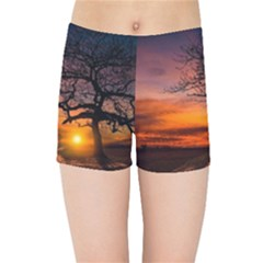 Lonely Tree Sunset Wallpaper Kids Sports Shorts