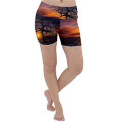 Lonely Tree Sunset Wallpaper Lightweight Velour Yoga Shorts