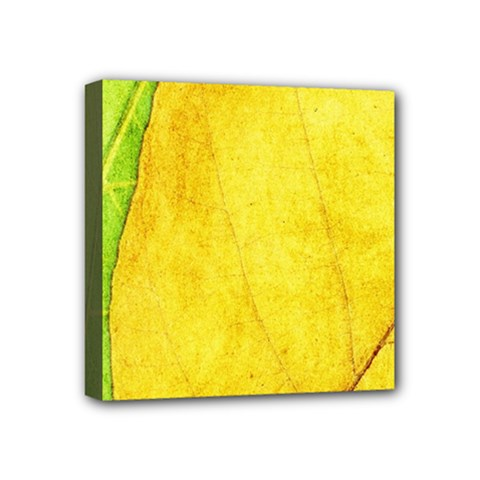 Green Yellow Leaf Texture Leaves Mini Canvas 4  X 4  (stretched)