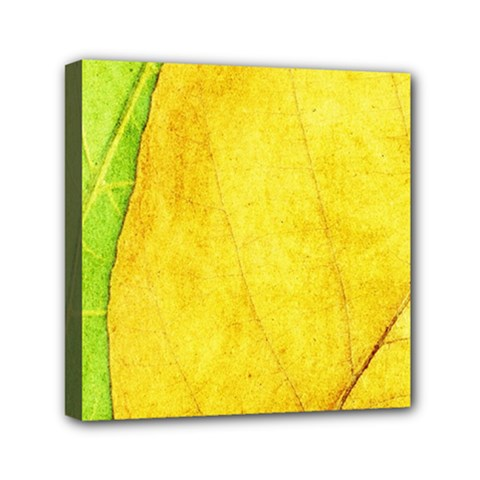 Green Yellow Leaf Texture Leaves Mini Canvas 6  X 6  (stretched)