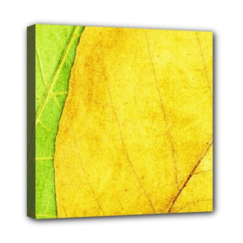 Green Yellow Leaf Texture Leaves Mini Canvas 8  X 8  (stretched)
