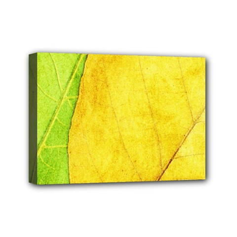 Green Yellow Leaf Texture Leaves Mini Canvas 7  X 5  (stretched)