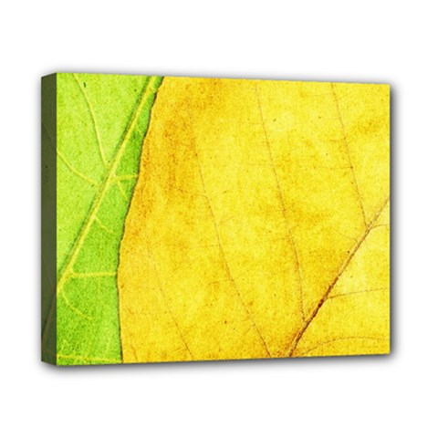 Green Yellow Leaf Texture Leaves Canvas 10  X 8  (stretched)