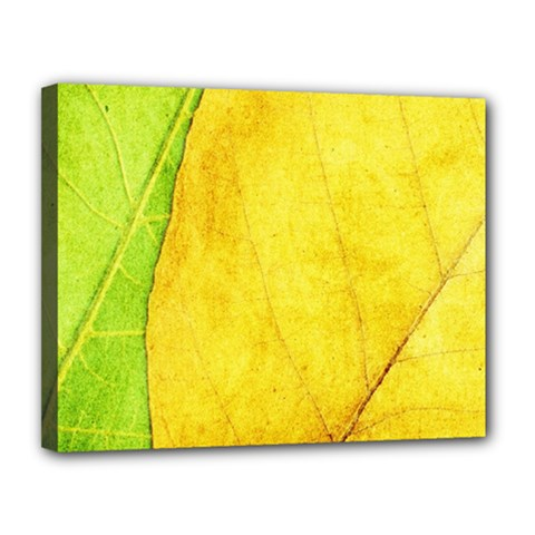 Green Yellow Leaf Texture Leaves Canvas 14  X 11  (stretched)