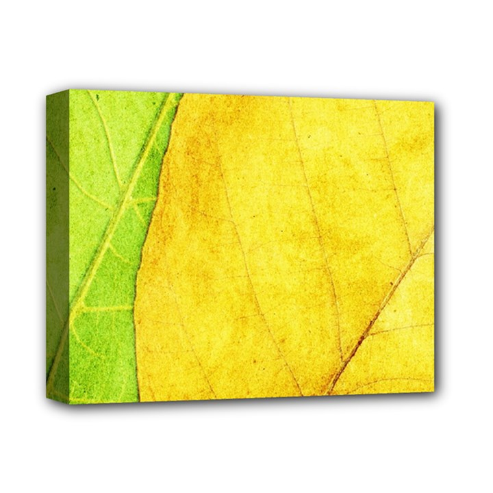 Green Yellow Leaf Texture Leaves Deluxe Canvas 14  x 11  (Stretched)