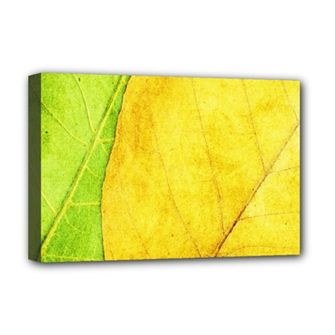 Green Yellow Leaf Texture Leaves Deluxe Canvas 18  X 12  (stretched)