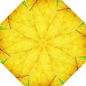 Green Yellow Leaf Texture Leaves Hook Handle Umbrellas (Small) View1