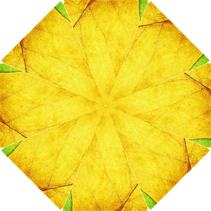Green Yellow Leaf Texture Leaves Hook Handle Umbrellas (Small)