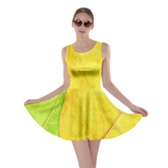 Green Yellow Leaf Texture Leaves Skater Dress