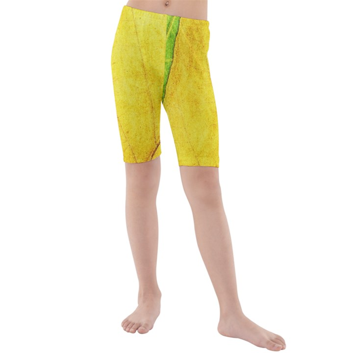 Green Yellow Leaf Texture Leaves Kids  Mid Length Swim Shorts