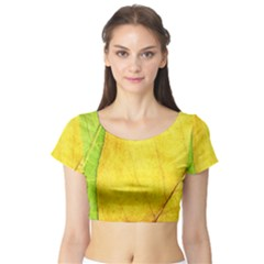 Green Yellow Leaf Texture Leaves Short Sleeve Crop Top