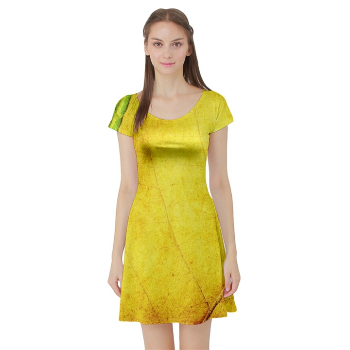 Green Yellow Leaf Texture Leaves Short Sleeve Skater Dress