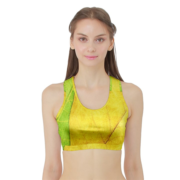 Green Yellow Leaf Texture Leaves Sports Bra with Border