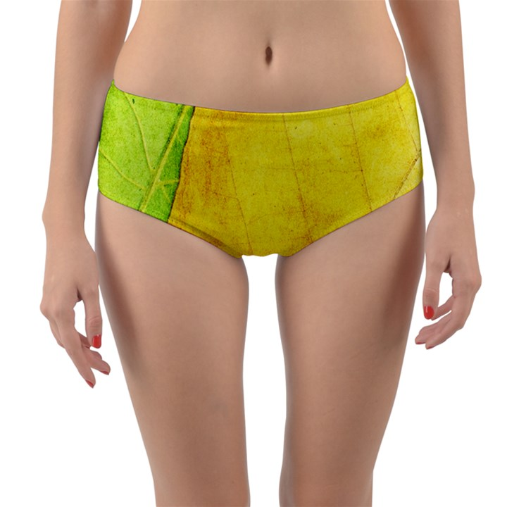 Green Yellow Leaf Texture Leaves Reversible Mid-Waist Bikini Bottoms