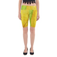 Green Yellow Leaf Texture Leaves Yoga Cropped Leggings