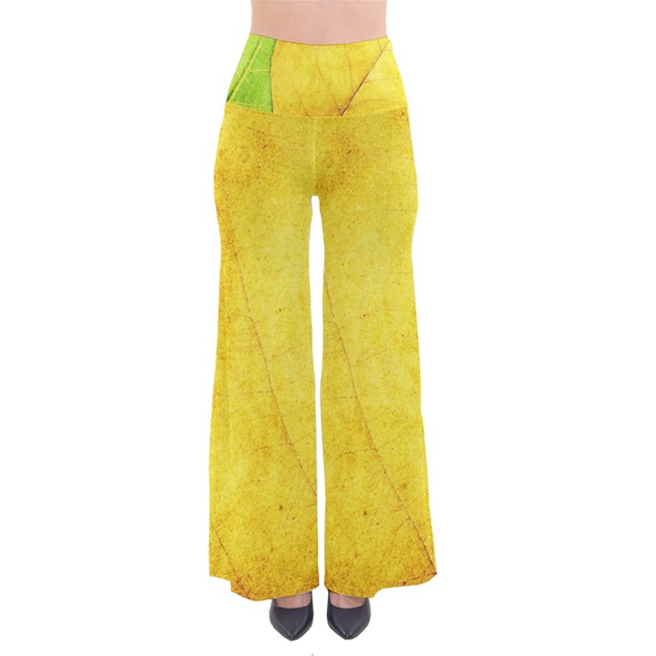 Green Yellow Leaf Texture Leaves So Vintage Palazzo Pants