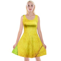 Green Yellow Leaf Texture Leaves Reversible Velvet Sleeveless Dress