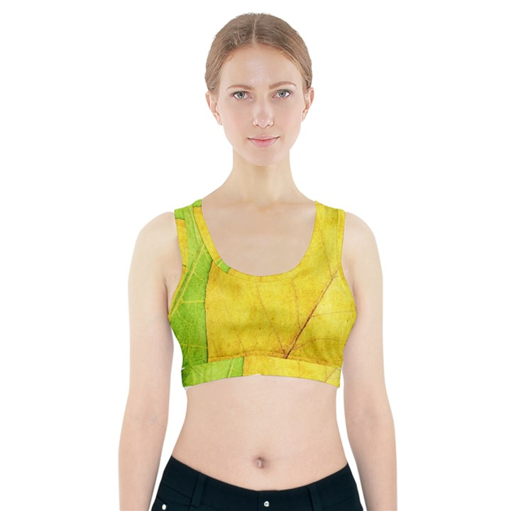 Green Yellow Leaf Texture Leaves Sports Bra With Pocket