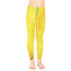 Green Yellow Leaf Texture Leaves Kids  Legging