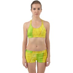 Green Yellow Leaf Texture Leaves Back Web Gym Set