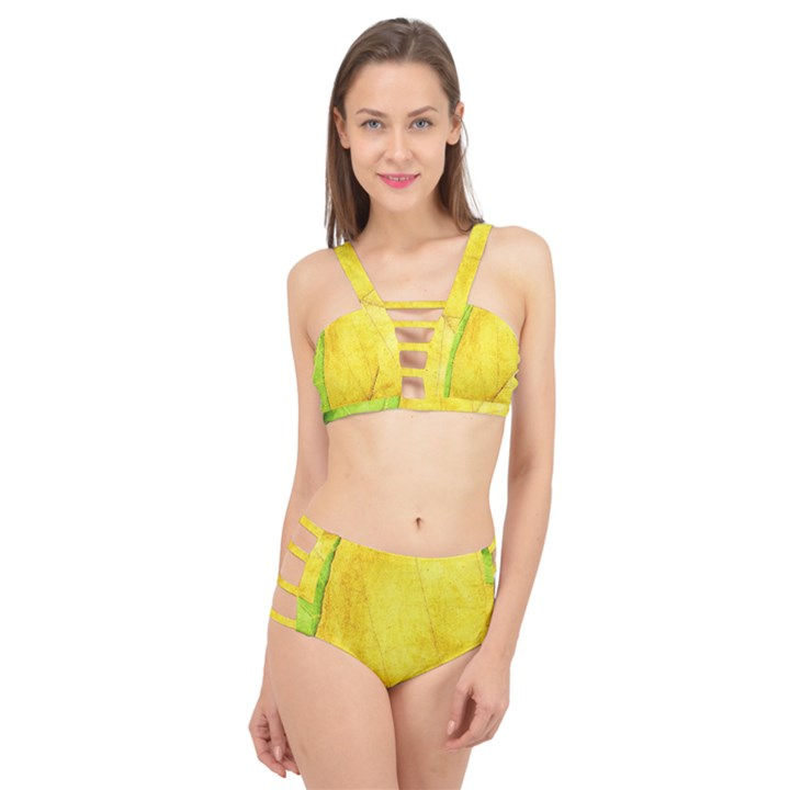 Green Yellow Leaf Texture Leaves Cage Up Bikini Set