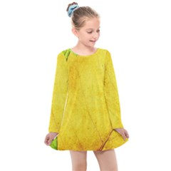 Green Yellow Leaf Texture Leaves Kids  Long Sleeve Dress