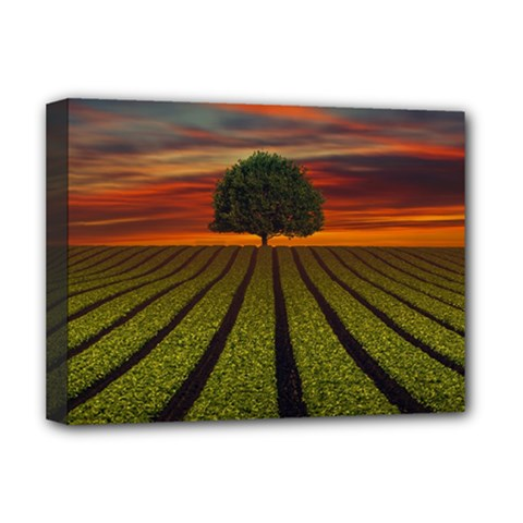 Natural Tree Deluxe Canvas 16  X 12  (stretched)