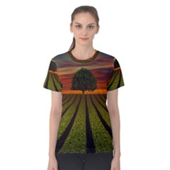 Natural Tree Women s Cotton Tee