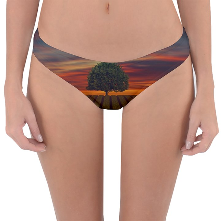 Natural Tree Reversible Hipster Bikini Bottoms