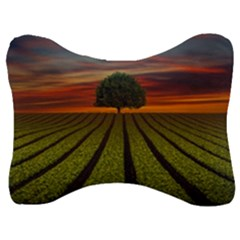 Natural Tree Velour Seat Head Rest Cushion