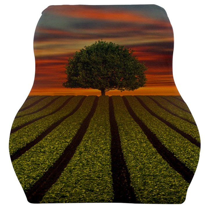 Natural Tree Car Seat Velour Cushion
