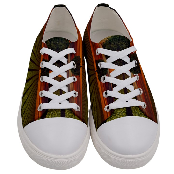 Natural Tree Women s Low Top Canvas Sneakers