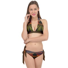Natural Tree Tie It Up Bikini Set