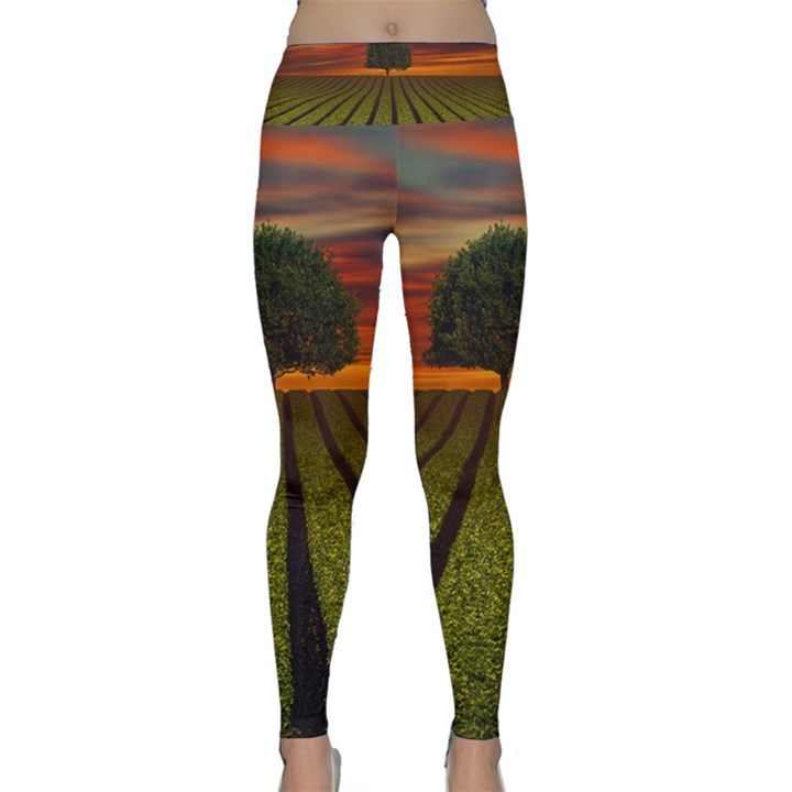Natural Tree Lightweight Velour Classic Yoga Leggings