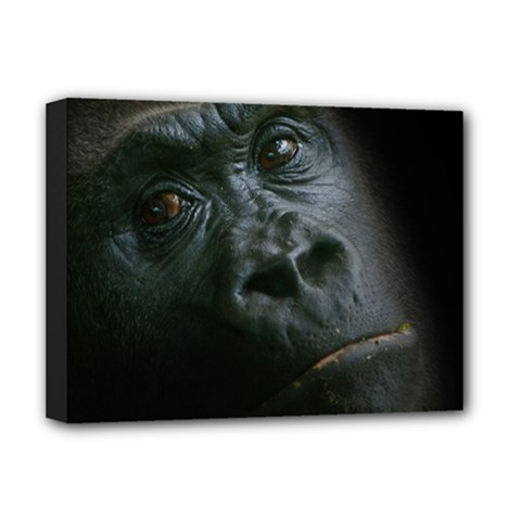 Gorilla Monkey Zoo Animal Deluxe Canvas 16  X 12  (stretched)