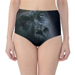 Gorilla Monkey Zoo Animal Classic High Waist Bikini Bottoms