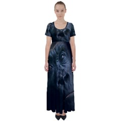 Gorilla Monkey Zoo Animal High Waist Short Sleeve Maxi Dress