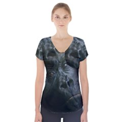 Gorilla Monkey Zoo Animal Short Sleeve Front Detail Top