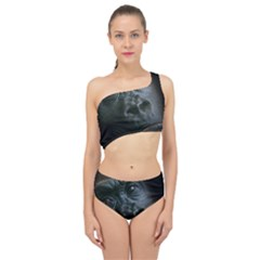 Gorilla Monkey Zoo Animal Spliced Up Two Piece Swimsuit by Nexatart