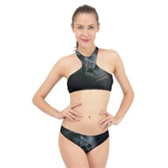 Gorilla Monkey Zoo Animal High Neck Bikini Set