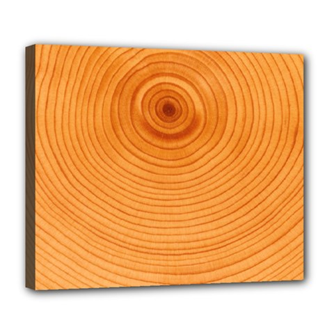 Rings Wood Line Deluxe Canvas 24  X 20  (stretched)