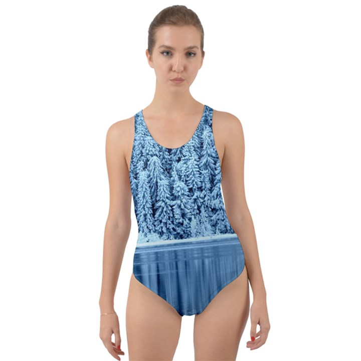Snowy Forest Reflection Lake Cut-Out Back One Piece Swimsuit