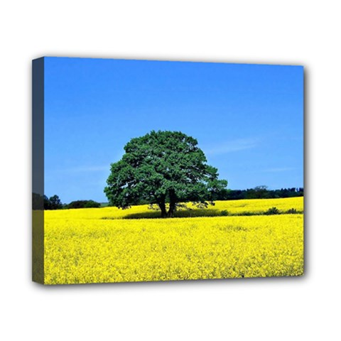 Tree In Field Canvas 10  X 8  (stretched)