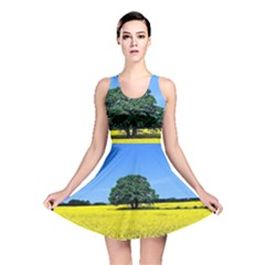 Tree In Field Reversible Skater Dress