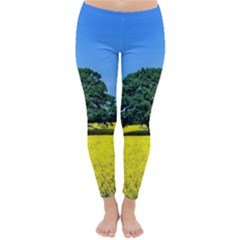 Tree In Field Classic Winter Leggings